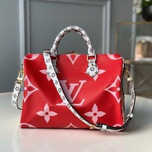Louis Vuitton giant speedy red pink